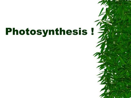 Photosynthesis !. The process by which green plants use the energy of the sunlight to produce sugars (carbohydrates)