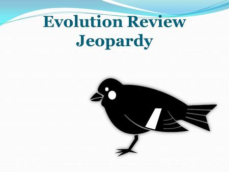 Evolution Review Jeopardy Ch. 14Ch. 15Vocab & Misc. $100100$100 100 $200200$200200$200200 $300300$300300$300300 $400400$400400$400400 $500500$500 500.