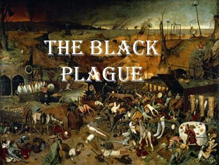 The Black Plague. How it was Transmitted The Black Plague or (Bubonic Plague) It is a Bacterial Infection 60% of infected will die unless treated by.