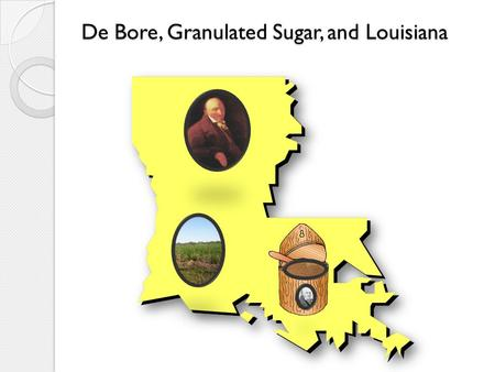 De Bore, Granulated Sugar, and Louisiana. Sugar cane contributes millions of dollars to Louisiana's economy. Of the U.S. sugar producing areas, Louisiana.