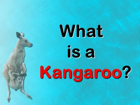 What is a Kangaroo?. kangarookangaroo kangaroo Have you ever heard of a kangaroo? What is a kangaroo? What does a kangaroo do? kangaroos Lets learn a.