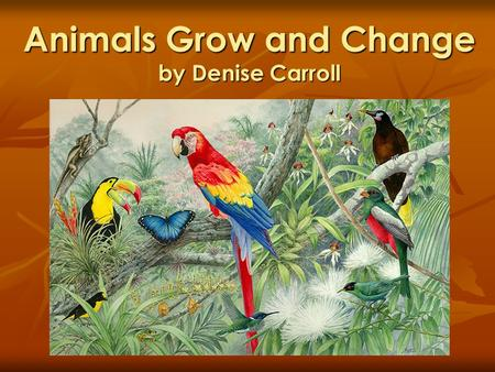 Animals Grow and Change by Denise Carroll. What do animals need to live and grow? Fresh air Fresh air Food Food Water Water Shelter Shelter.