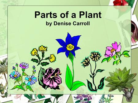 Parts of a Plant by Denise Carroll. Living Things All living things grow and change. All living things need food, water, and air to live.