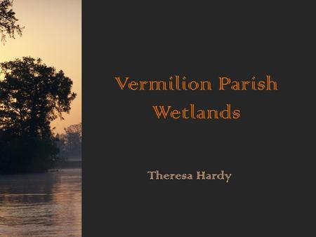 Vermilion Parish Wetlands Theresa Hardy. This is Vermilion Parish. Vermilion Parish is covered with wetlands.