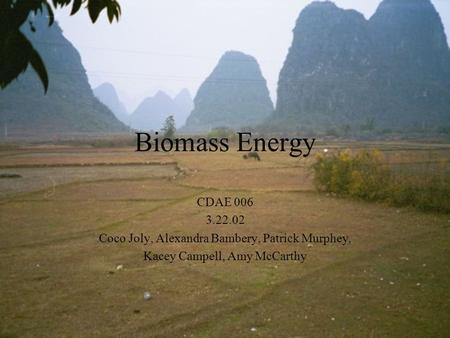 Biomass Energy CDAE 006 3.22.02 Coco Joly, Alexandra Bambery, Patrick Murphey, Kacey Campell, Amy McCarthy.