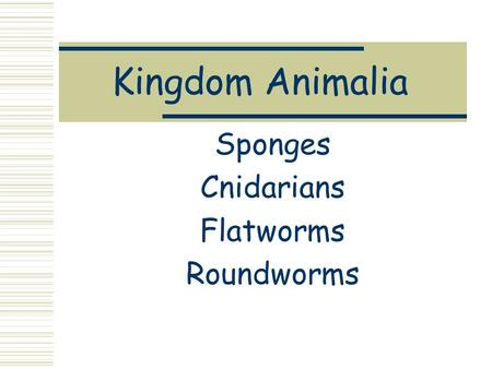 Kingdom Animalia Sponges Cnidarians Flatworms Roundworms.