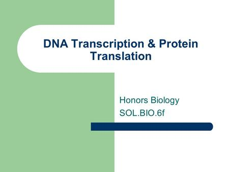 DNA Transcription & Protein Translation Honors Biology SOL.BIO.6f.