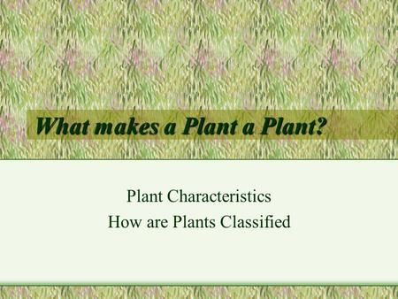 What makes a Plant a Plant? Plant Characteristics How are Plants Classified.