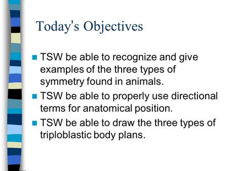 Today s Objectives TSW be able to recognize and give examples of the three types of symmetry found in animals. TSW be able to properly use directional.