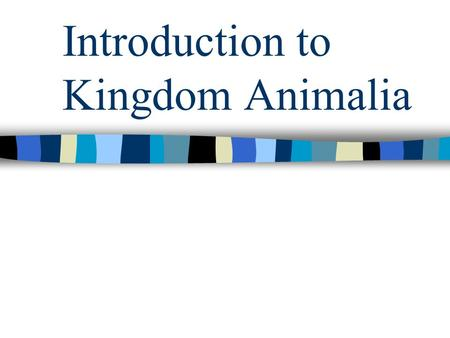 Introduction to Kingdom Animalia. Characteristics of Animals Heterotrophic Multicellular Movement Eukaryotic.