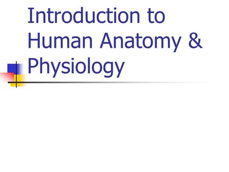 Introduction to Human Anatomy & Physiology. Anatomical Terms Anatomy Physiology Pathology Embryology Histology Cytology Homeostasis.