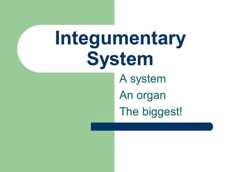 Integumentary System A system An organ The biggest!
