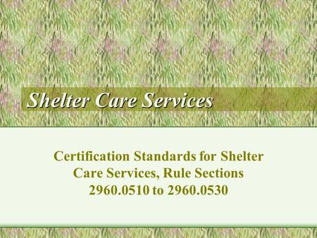 Shelter Care Services Certification Standards for Shelter Care Services, Rule Sections 2960.0510 to 2960.0530.