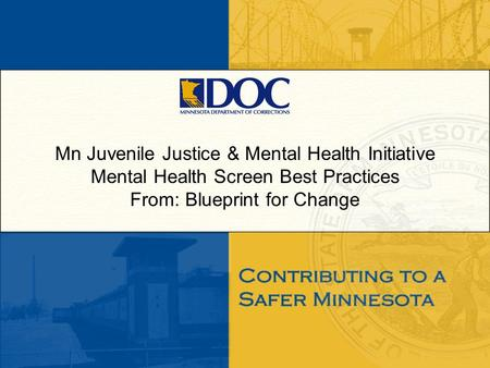 Mn Juvenile Justice & Mental Health Initiative Mental Health Screen Best Practices From: Blueprint for Change.
