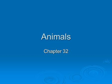 Animals Chapter 32. Characteristics of the Animal Kingdom 1)Multicellular 2)Heterotrophic 3)Sexual Reproduction and Development (Most reproduce sexually)
