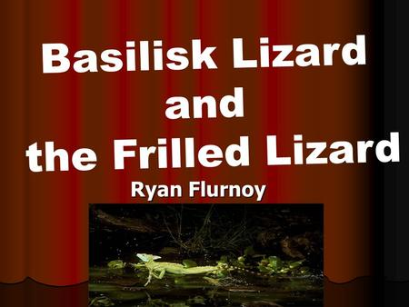 Ryan Flurnoy Basilisk Lizard and the Frilled Lizard.