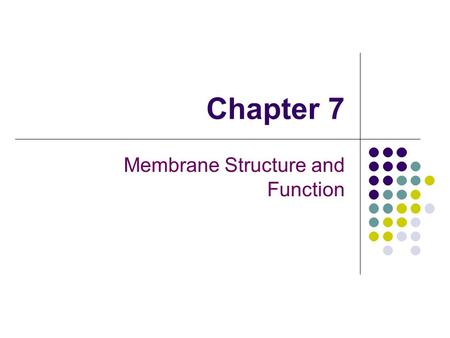 Chapter 7 Membrane Structure and Function. You should be able to: 1. Define the following terms: amphipathic molecules, aquaporins, diffusion 2. Explain.