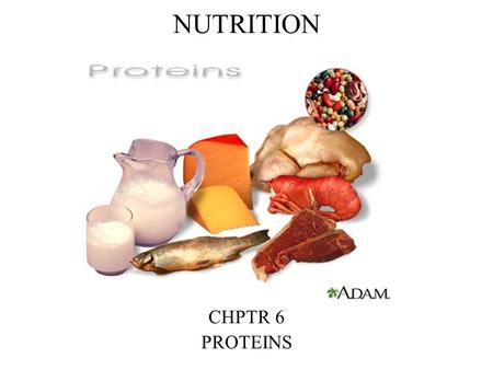 NUTRITION CHPTR 6 PROTEINS. What are proteins? They are the basic material of every body cell Greek meaning of first importance.