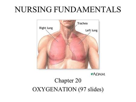 NURSING FUNDAMENTALS Chapter 20 OXYGENATION (97 slides)
