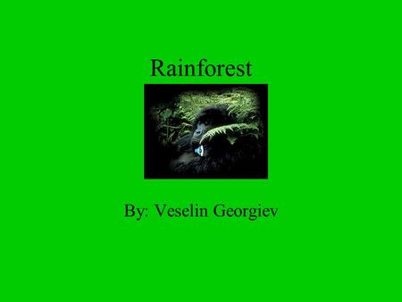 Rainforest By: Veselin Georgiev What is the rainforest? Tropical rainforests are complex ecosystems, which are made up of four distinct environments.