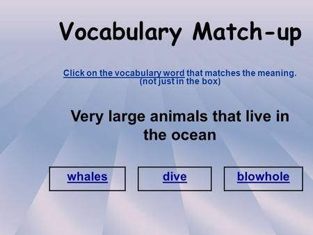 Vocabulary Match-up Click on the vocabulary word that matches the meaning. (not just in the box) Very large animals that live in the ocean whales diveblowhole.