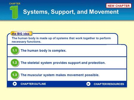 The BIG idea CHAPTER OUTLINE Systems, Support, and Movement CHAPTER The human body is made up of systems that work together to perform necessary functions.