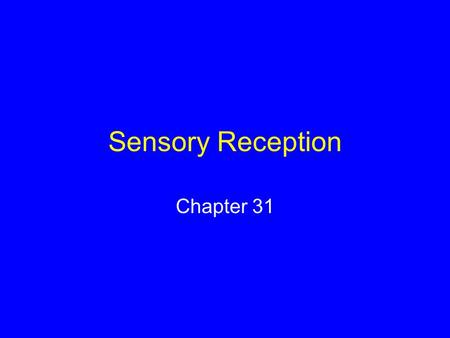 Sensory Reception Chapter 31.