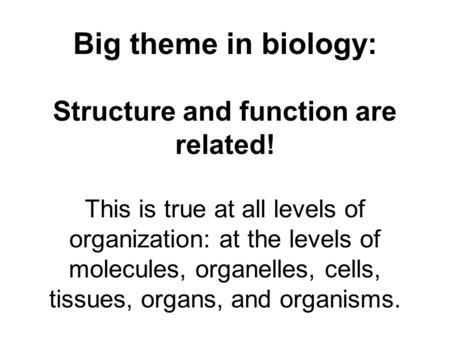 Structure and function are related!