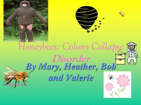 Honeybees: Colony Collapse Disorder By Mary, Heather, Bob and Valerie.