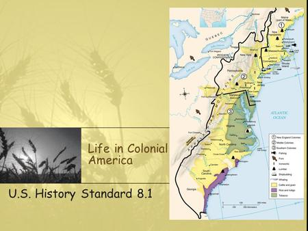 Life in Colonial America U.S. History Standard 8.1.
