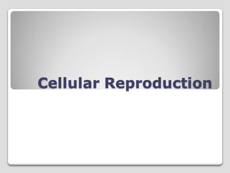 Cellular Reproduction. Cellular Growth Cells grow until they reach their size limit, then they either stop growing or divide. A cells size is limited.
