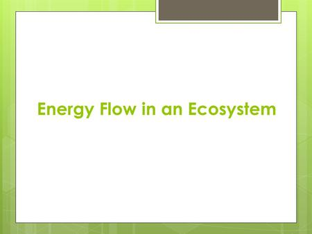 Energy Flow in an Ecosystem. Energy Transfer Energy is the ability to do work 3 main paths in which energy flows Producers Consumers Decomposers.