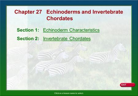Click on a lesson name to select. Section 1: Echinoderm Characteristics Section 2: Invertebrate Chordates Chapter 27 Echinoderms and Invertebrate Chordates.