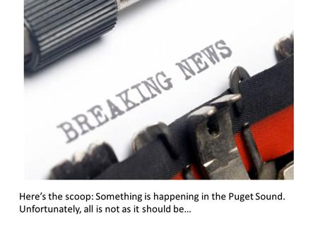 Heres the scoop: Something is happening in the Puget Sound. Unfortunately, all is not as it should be…