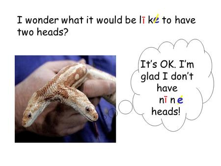 I wonder what it would be l k to have two heads? e/ ī Its OK. Im glad I dont have n heads! ī / e.