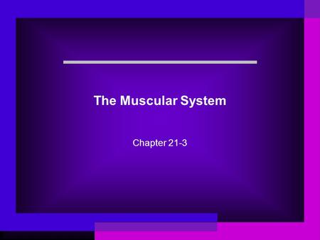 The Muscular System Chapter 21-3. Science Words Muscle Voluntary muscle Involuntary muscle Skeletal muscle Tendon Smooth muscle Cardiac muscle.