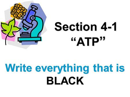 Section 4-1 ATP Section 4-1 ATP Write everything that is BLACK.