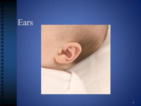 Ears 1. Structure and functions of the ears 2 Structures of the ears External ear External ear Middle ear Middle ear Also known as the tympanic cavity.