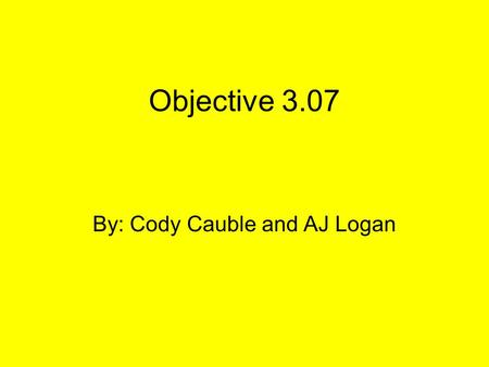 Objective 3.07 By: Cody Cauble and AJ Logan. 17. How do channel members add value to a product? A.By performing certain channel activities expertly B.By.