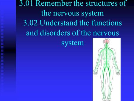 3.01 Remember the structures of the nervous system 3.02 Understand the functions and disorders of the nervous system.