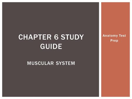 Anatomy Test Prep CHAPTER 6 STUDY GUIDE MUSCULAR SYSTEM.