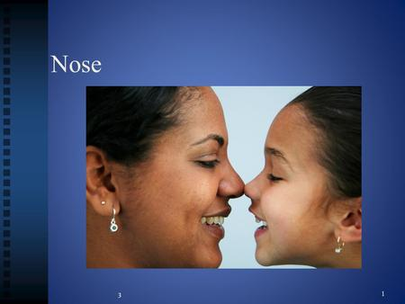 Nose 3 1. Structures of the nose Nares Nares Nasal cilia Nasal cilia Nasal septum Nasal septum Olfactory receptors Olfactory receptors Turbinates Turbinates.