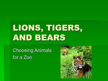 LIONS, TIGERS, AND BEARS Choosing Animals for a Zoo.