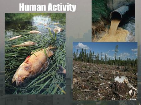 earth and human activity Human activities contribute to climate change by causing changes in earth's  atmosphere in the amounts of greenhouse gases, aerosols (small.
