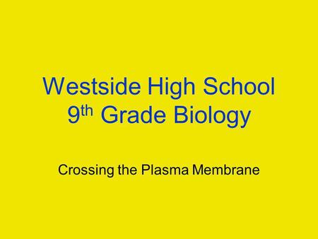 Westside High School 9 th Grade Biology Crossing the Plasma Membrane.