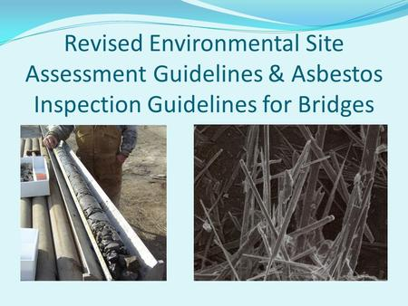 Revised Environmental Site Assessment Guidelines & Asbestos Inspection Guidelines for Bridges.