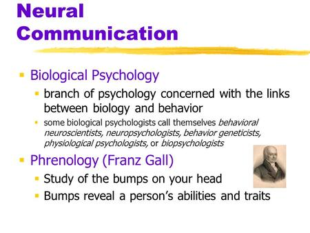 Neural Communication Biological Psychology branch of psychology concerned with the links between biology and behavior some biological psychologists call.