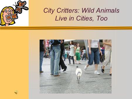 City Critters: Wild Animals Live in Cities, Too Charles Nilon, a biologist for the Kansas Department of Wildlife and Parks explains,Any animal that you.