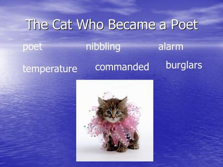 The Cat Who Became a Poet poetnibbling alarm temperature commanded burglars.