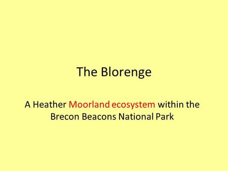 The Blorenge A Heather Moorland ecosystem within the Brecon Beacons National Park.
